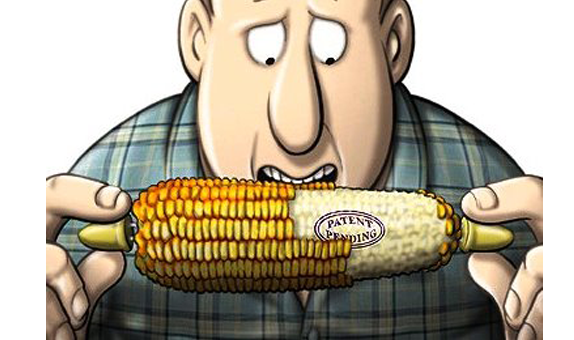 """Monsanto CEO Hugh Grant Rakes in """" Million from Shares As Biotech Giant Continues Destroying Planet   Alternet"""